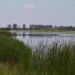 Zalew w Majdanie Zahorodyńskim, gmina Siedliszcze