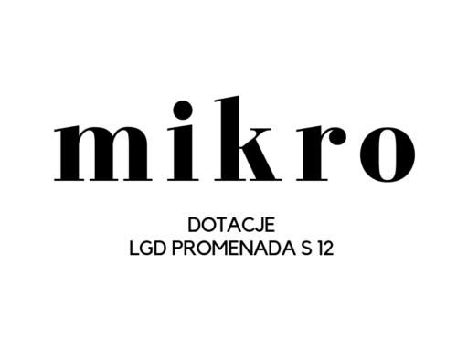 """Nabór wniosków w programie """"Mikrodotacje LGD PROMENADA S 12"""""""