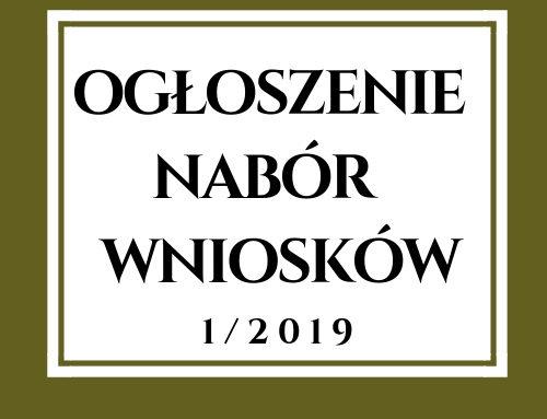 Ogłoszenie o naborze wniosków nr 1/2019 w zakresie podejmowania działalności gospodarczej